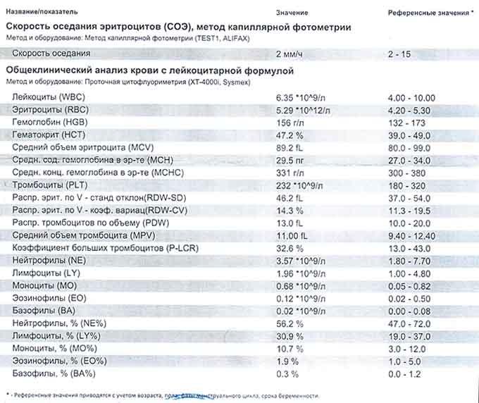 Результаты общего анализа крови